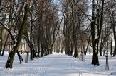 zima-park